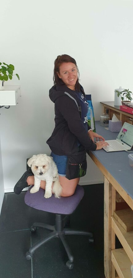 Human and dog on reception chair